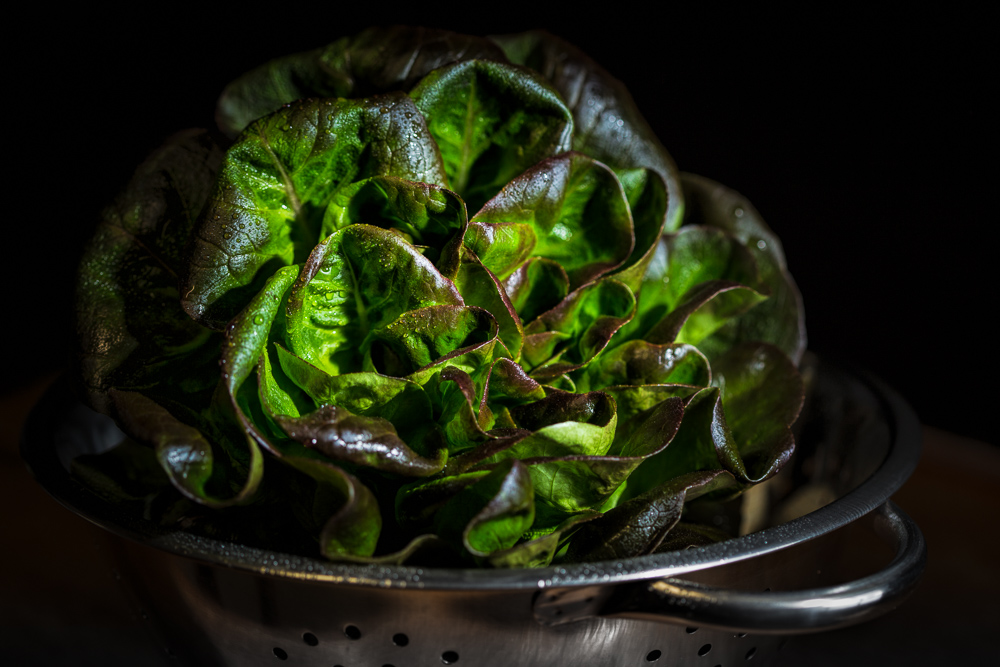 After-Red Butter Lettuce